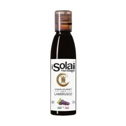 Crema Aceto Balsamico Lambrusco - I Solai - 180gr