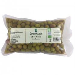 Green Olives in brine - Quattrociocchi - 500gr