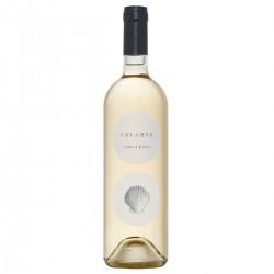 Vino Bianco Chlamys Vermentino di Sardegna - Accademia Olearia - 750ml