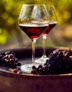 Vini rossi italiani di alta qualità - Acquista online